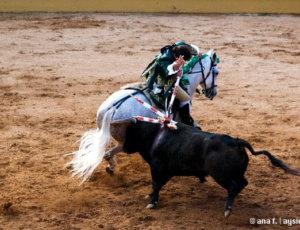 Bikoborbe po Portugalsko
